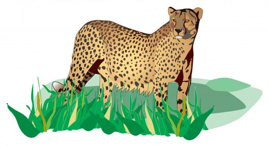 Spotted Standing Cheetah Grass