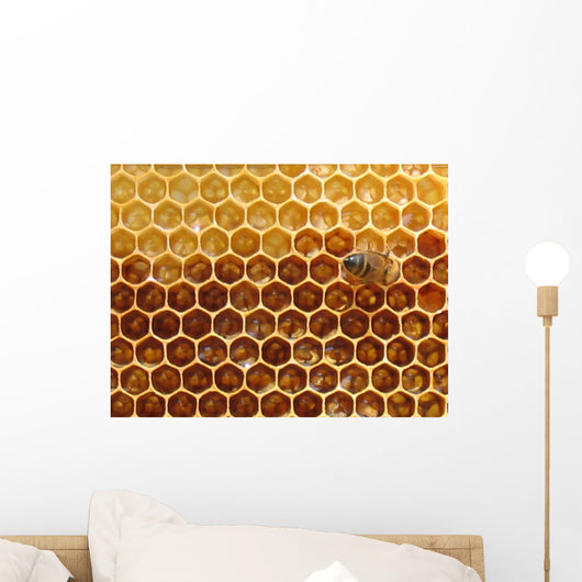 Honey in the Hive Wall Mural