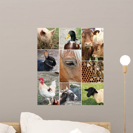 Collage Farm Animals