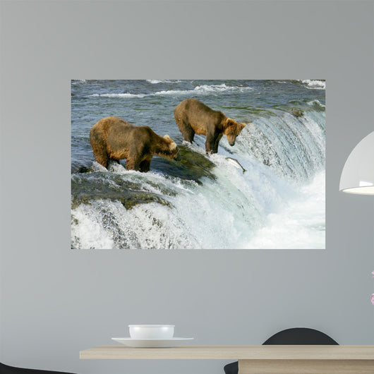 Grizzly Bears Wall Mural
