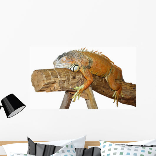 Asleep Lizards Wall Decal