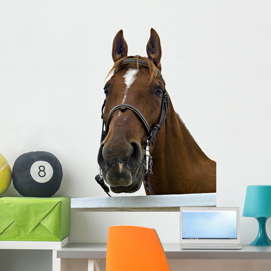Portrait Horse Wall Decal