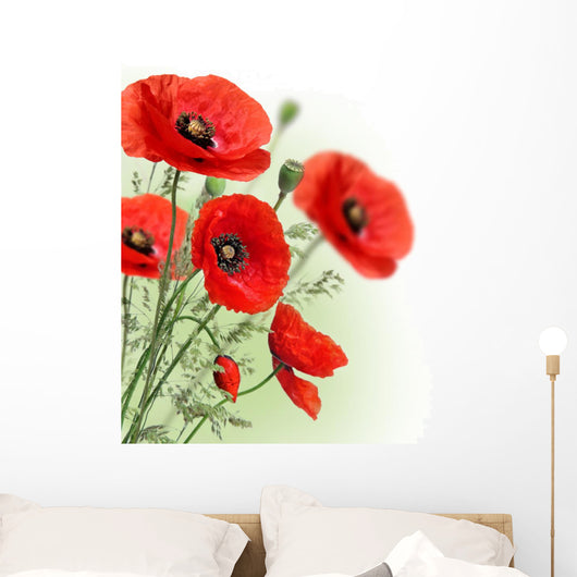 Poppies Flowers Border Wall Decal