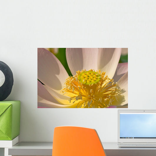 Zen Flower Wall Decal