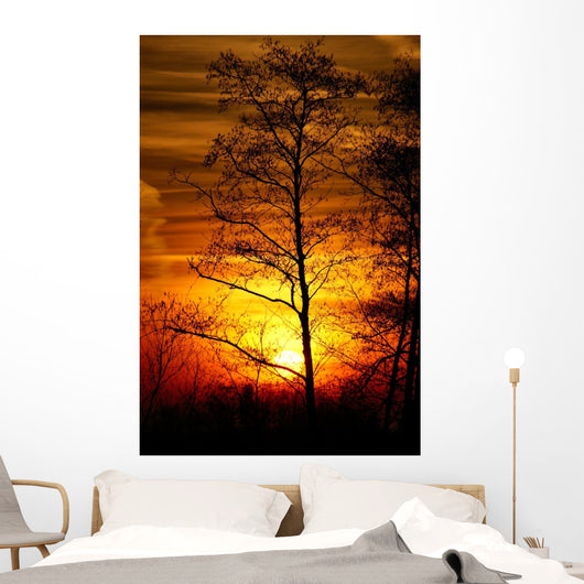 Tree Silhouetted against the Sunset Wall Decal