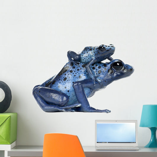 Female Blue and Black Poison Dart Frog with young Wall Decal