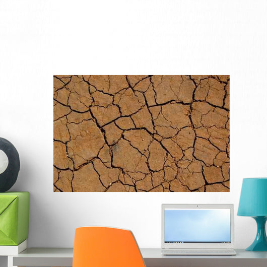 Bodenerosion Wall Decal
