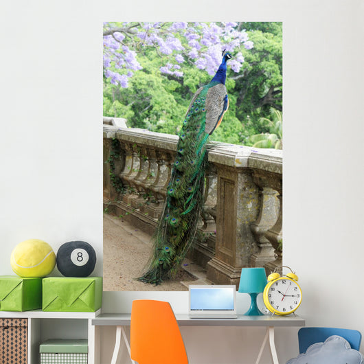 Peacock Fence Wall Decal