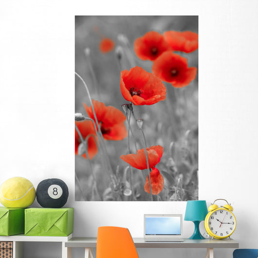 Red Poppies on Black and White Background - Vertical Wall Decal