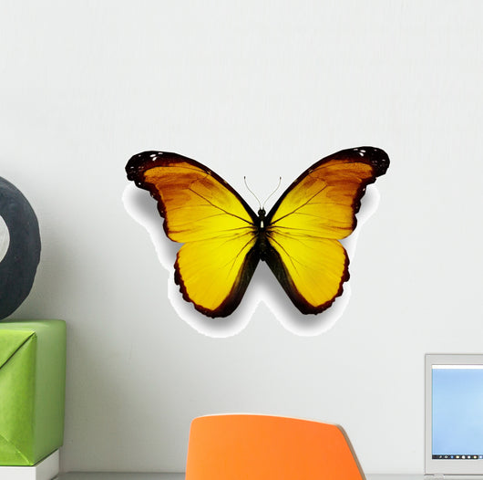 Yellow Butterfly White Wall Decal