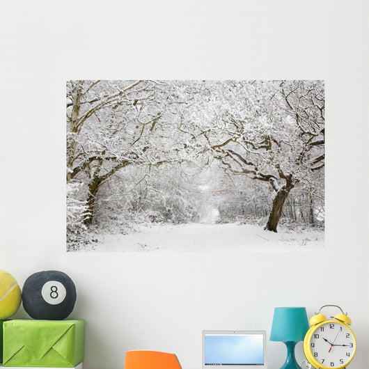 Woodland snow scene Wall Mural