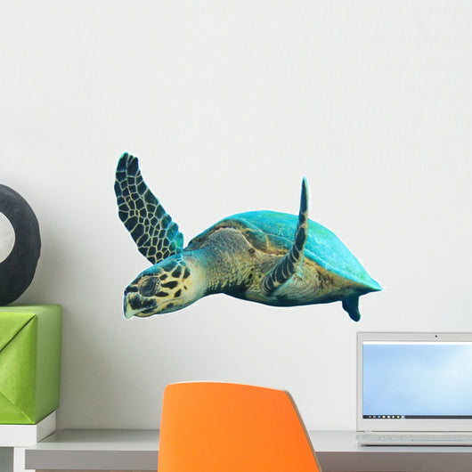 Hawksbill Sea Turtle Wall Decal