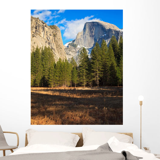 Yosemite Valley Landscape