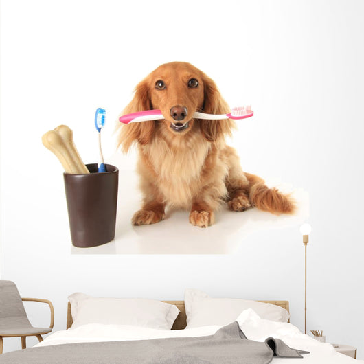 Dog and Tooth Brush Wall Decal