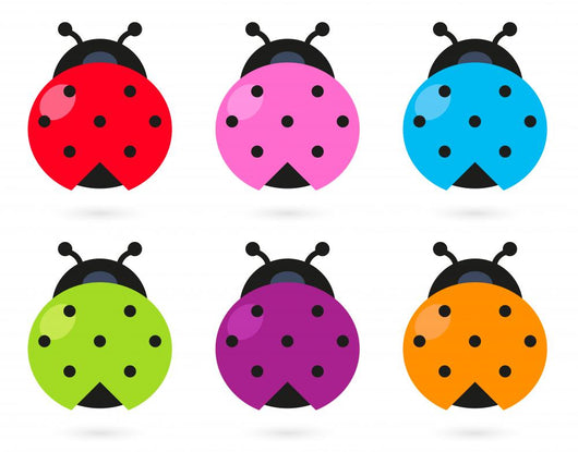 Cute colorful Ladybug set isolated on white Wall Decal