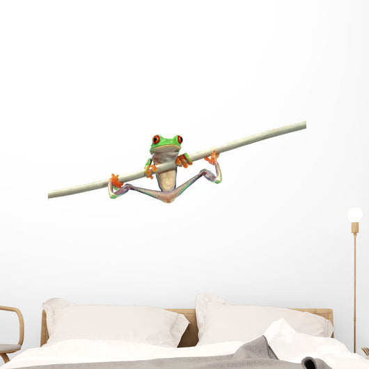 Red-Eyed Tree Frog Wall Decal