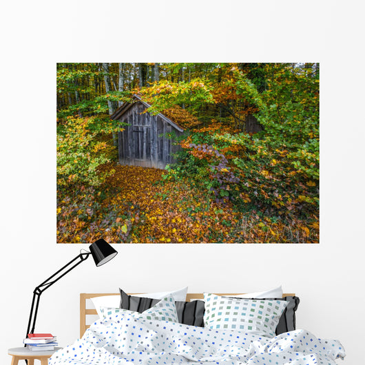 Hut Forest Wall Mural