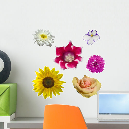 Different Flowers Collection Wall Mural