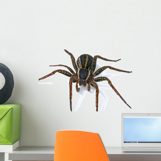 Spider Wall Decal