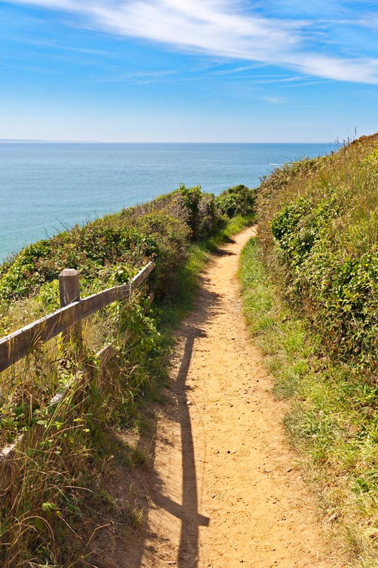 Path along Coastline Carteret Wall Mural