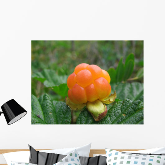 cloudberry Wall Mural