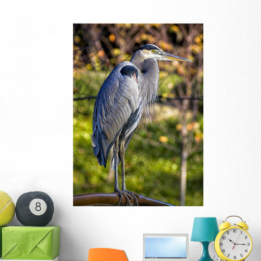Great Blue Heron Wall Mural
