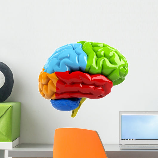 Colorful Brain Wall Decal