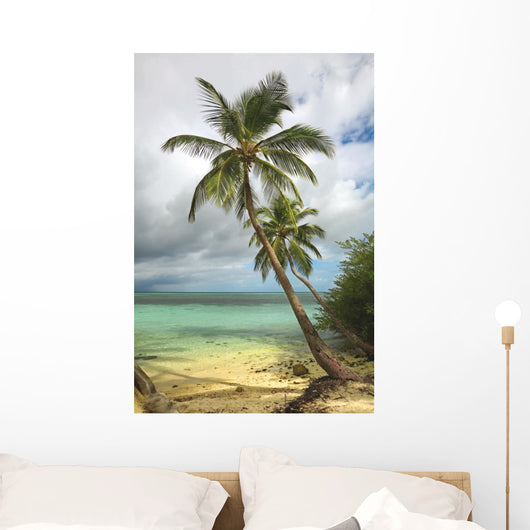 Tropical beach with palm tree Wall Mural