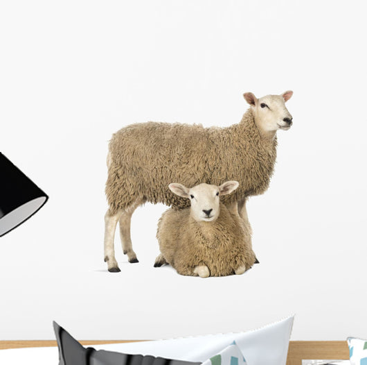 Sheep Standing Over Another Lying Wall Decal