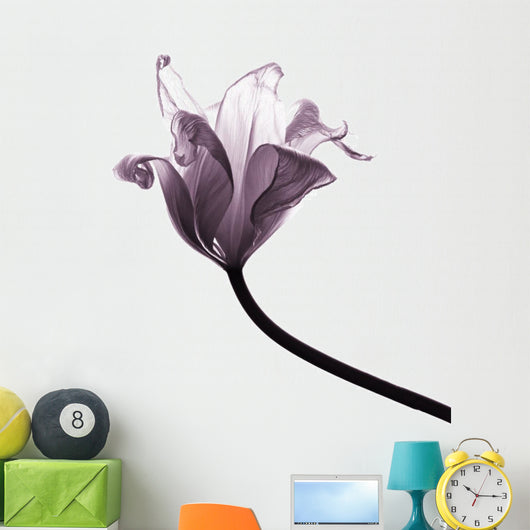 old tulip Wall Decal