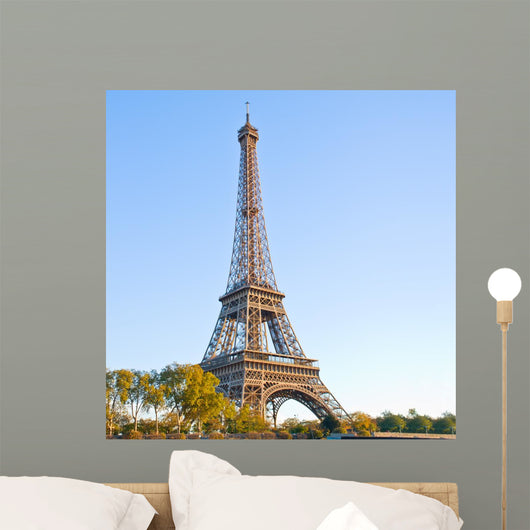 eiffel tour  in France, Paris Wall Mural