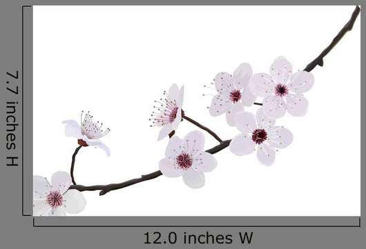 Branch With Flowers of Almond Wall Decal