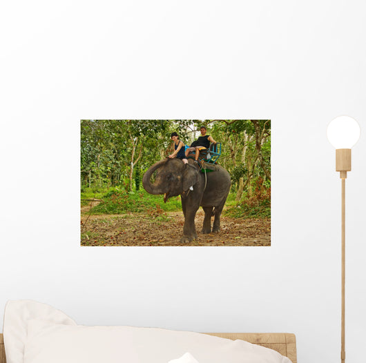 Elephant Trekking in Thai Jungle Wall Mural