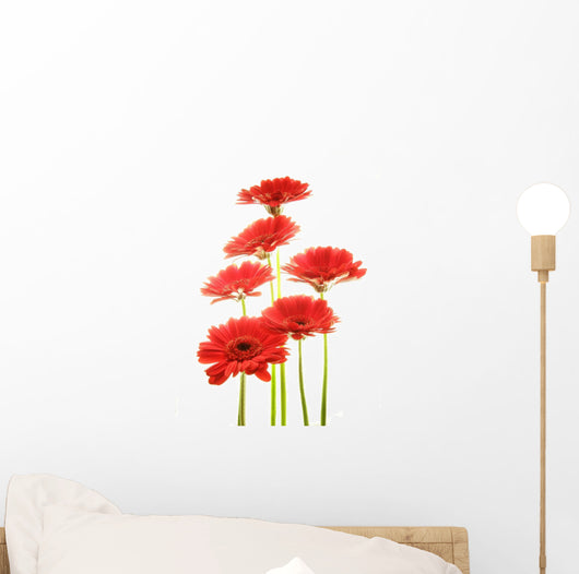 Red Gerberas Wall Decal