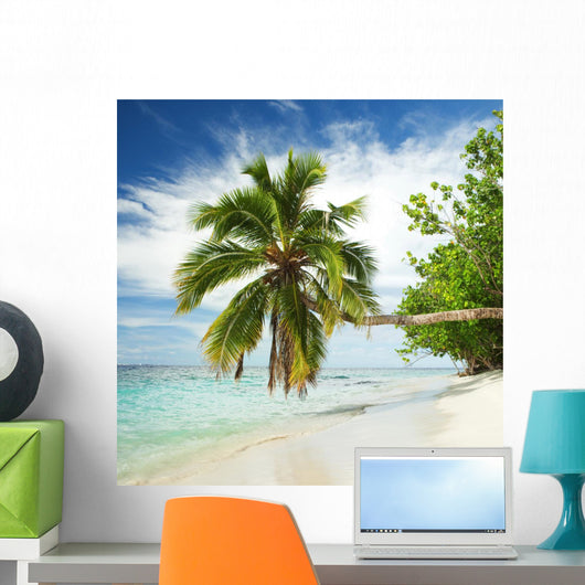 Tropical Beach with Palm