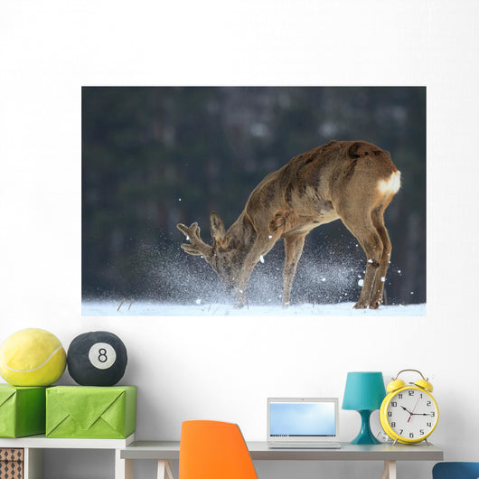 Roe Deer Wall Mural