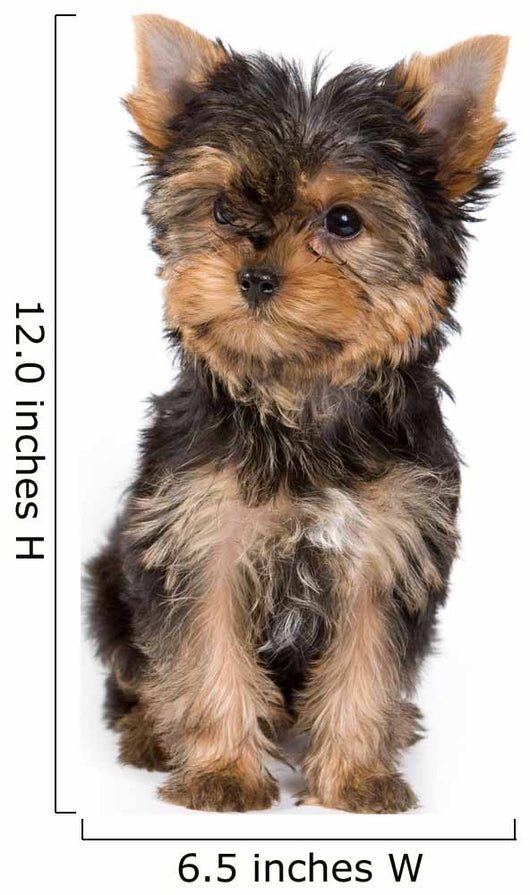 Yorkshire Terrier Puppy Yorkie Wall Decal