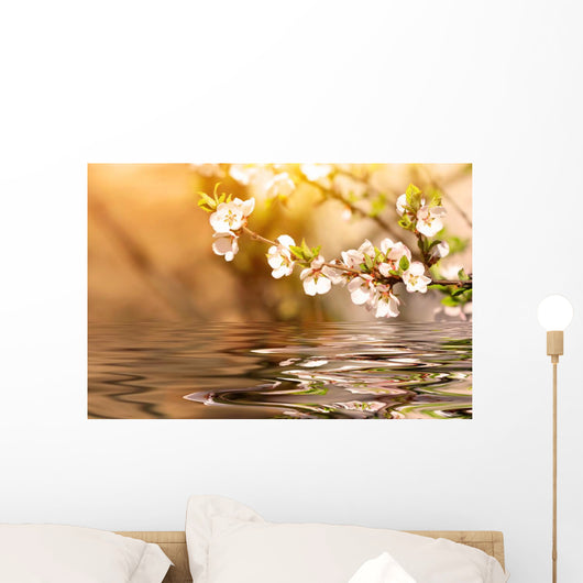 Cherry Tree Branch Over the Water Wall Mural
