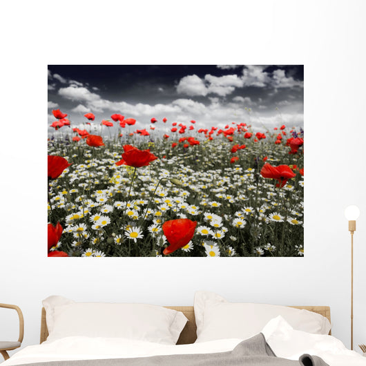 Poppies in a Field Wall Mural
