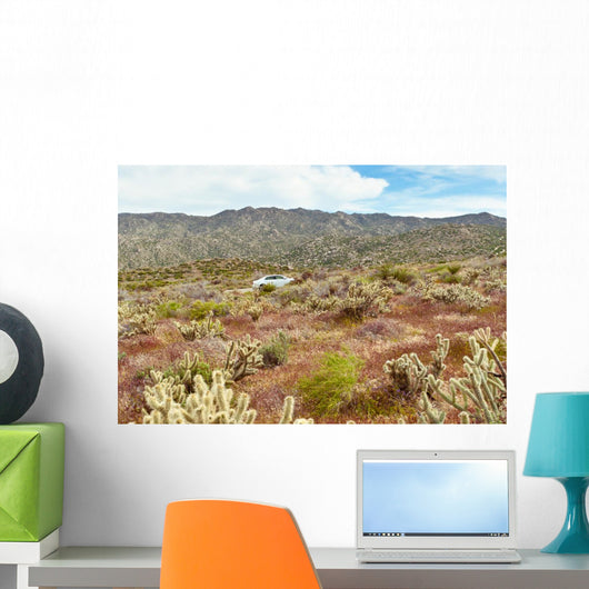 Desert Wildflowers and Cactus Wall Mural