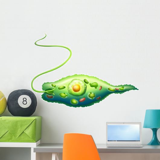 Euglena Wall Decal