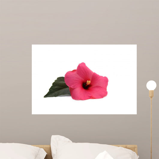 Pink Hibiscus Wall Decal