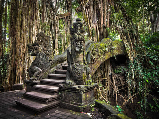 Dragon Bridge at the Monkey Forest Sanctuary in Ubud Wall Mural