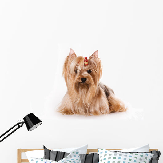 Yorkshire Terrier Yorkie Wall Decal