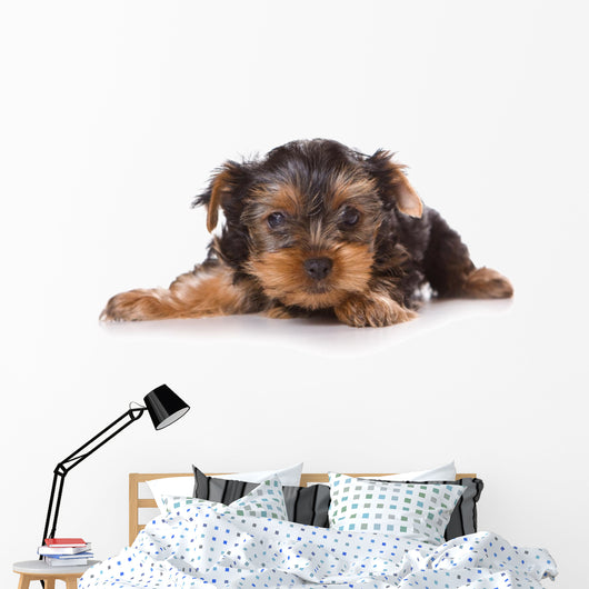 Yorkshire Terrier Yorkie Puppy Wall Decal