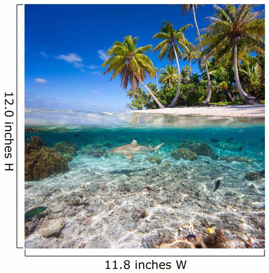 Tropical island under and above water