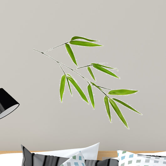 illustration with isolated green bamboo branch