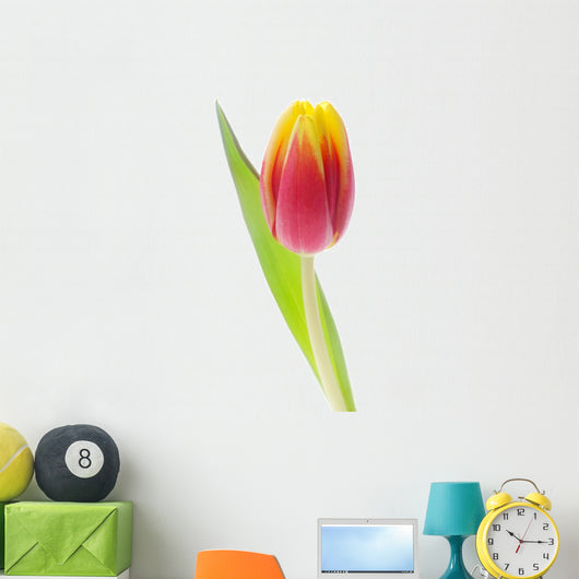 Tulip Wall Decal