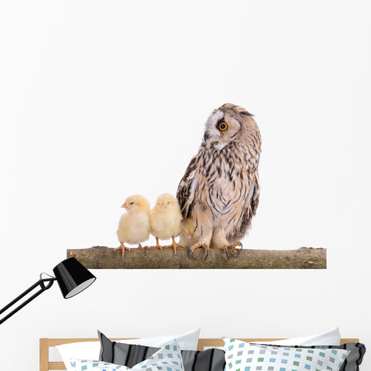 Owl with Newborn Chickens Wall Decal