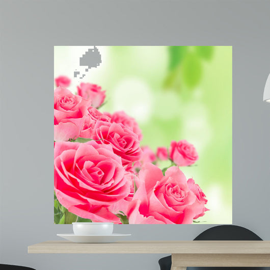 Natural pink roses background Wall Mural